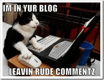 Blog kitty resized 600