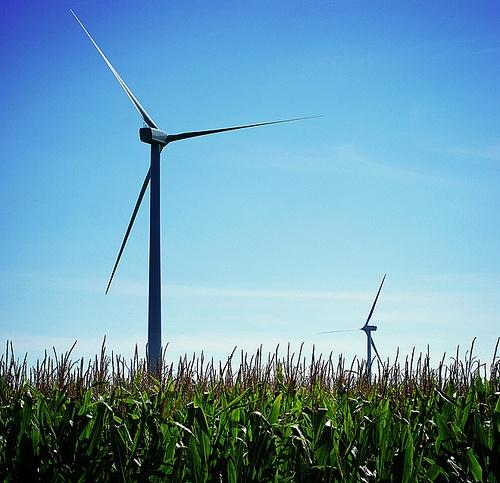 green marketing energy companies