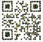Tacobell QR Code B2