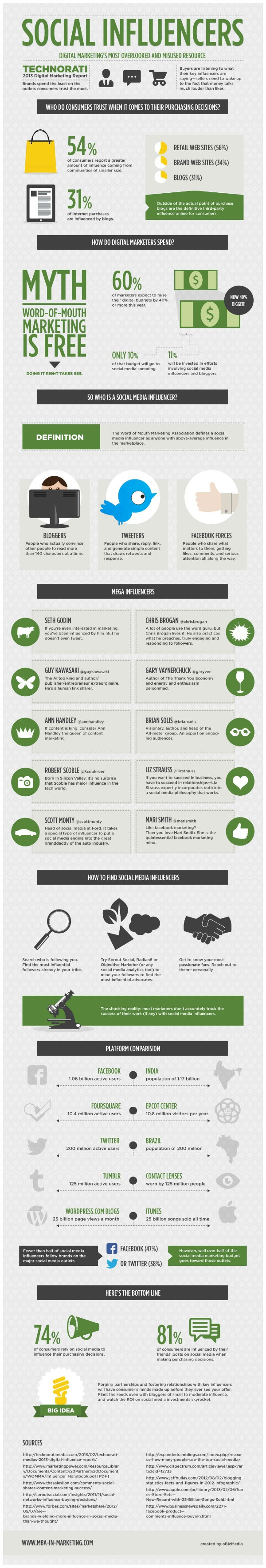 social influencers infographic