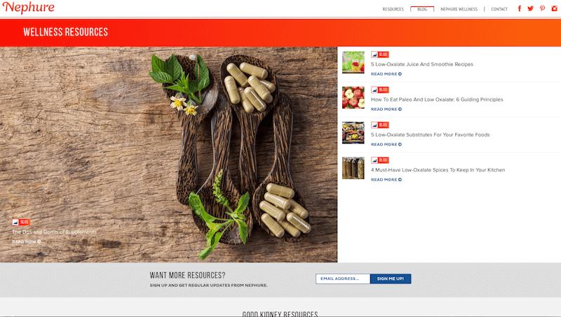 best doctor website design nephure .png