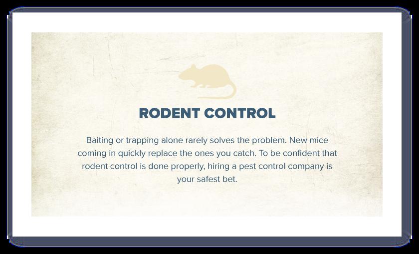 cycreek-ig-rodent-control